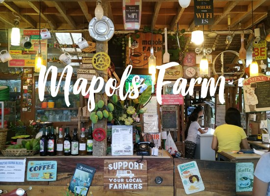 Mapols Farm Guide: More Than Just A Farm In Pototan, Iloilo