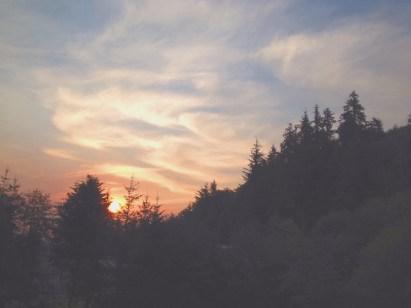 Picnics: A Time to Gather | www.megiswell.com