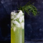This Gin Mojito with Dill is an aromatic cocktail that feels like a breath of fresh air; light, herby, and refreshing. #gin #mojito #cocktail #dill   www.megiswell.com