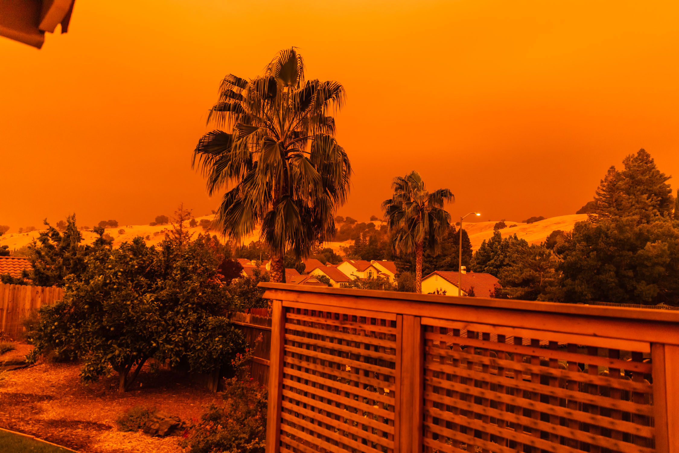 A landscape picture of the author's backyard during the LNU fires of 2020.