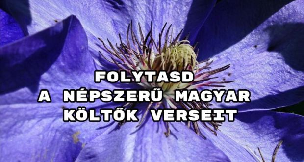 Folytasd a népszerű magyar költők verseit kvíz - megy a telitalálat?