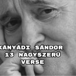 Összeállításunkban Kányádi Sándor verseiből válogattunk.