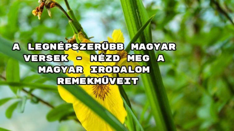 A legnépszerűbb magyar versek