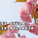 Jöjjön Juhász Gyula: Április bolondja verse.