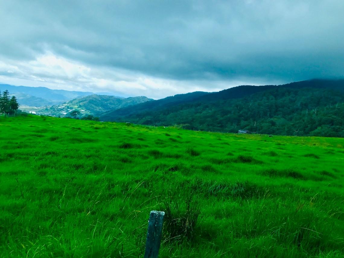 Kota Kinabalu Desa Dairy Farm 1