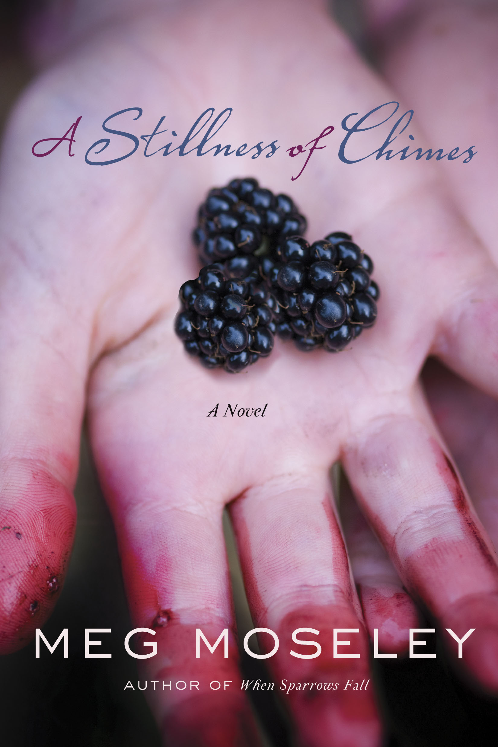 Amazon - A Stillness of Chimes