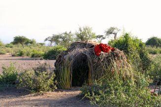 Hadzabe huts