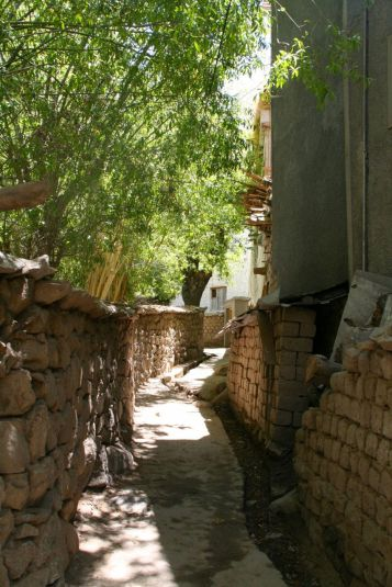 Charming back alleys of Leh