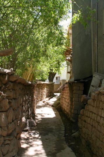 Charming back alleys of Leh