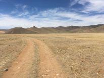 Now it's really desert!