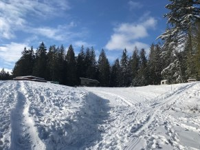 Upper Langley Cohousing- popular sledding hills