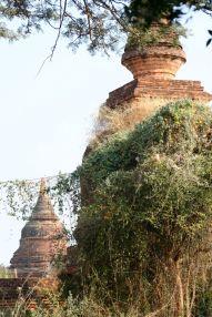 Myanmar #6 (264,65,66) Bagan, temples, inscriptions, B-day party 075