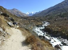 Walking through the valley next to a rushing stream