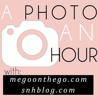 A Photo an Hour Link-Up
