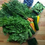 Summer CSA week Two