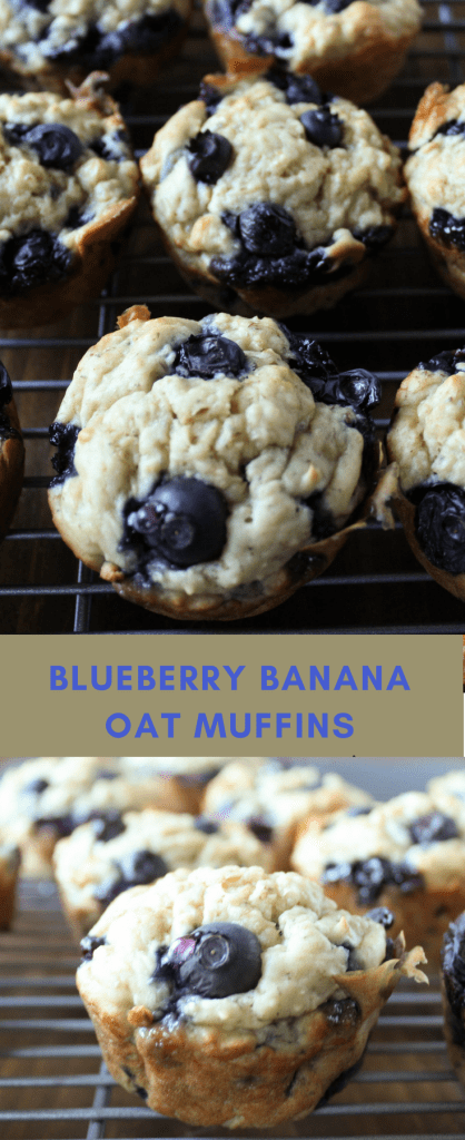 Blueberry banana oat muffins
