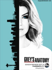 greys-main copia