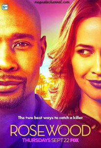 rosewood-season-2-key-art_full-copia
