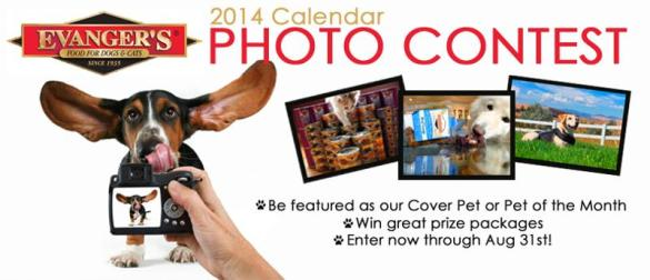 Evangers calendar pet  Photo Contest
