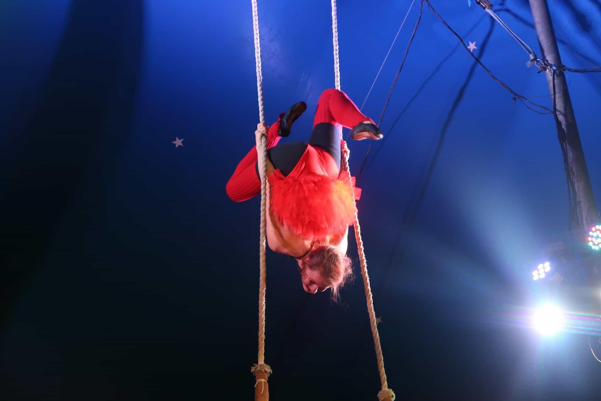 Circus Ferrel