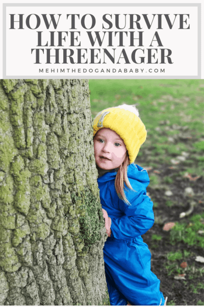 How To Survive Life With A Threenager