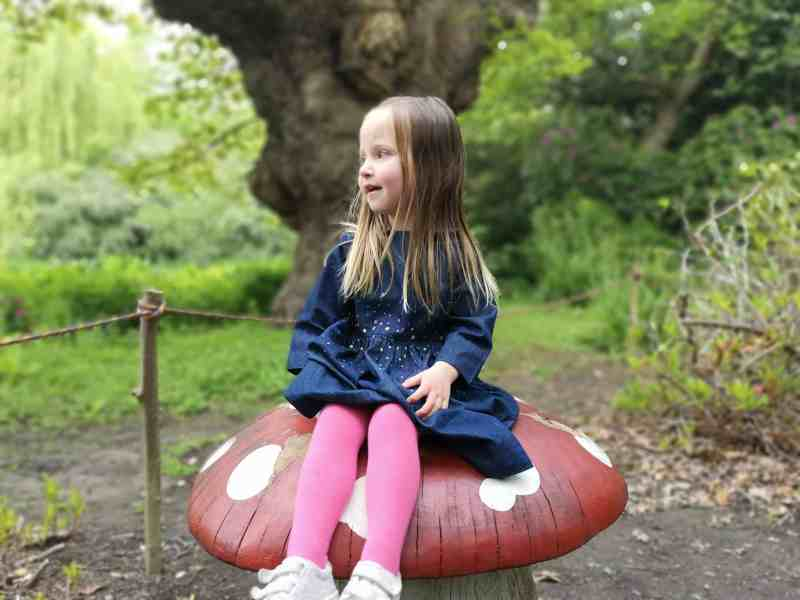 Erin sat on a toadstool