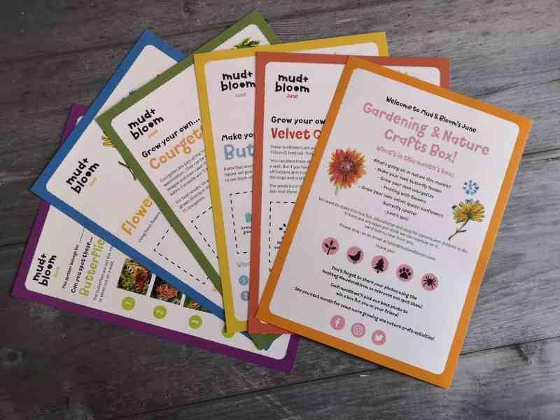 Mud & Bloom activity cards
