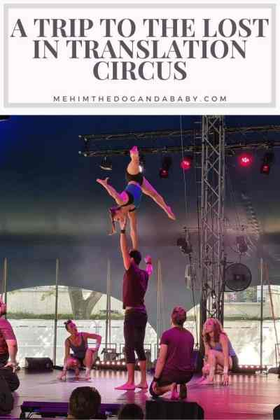 A Trip To The Lost In Translation Circus