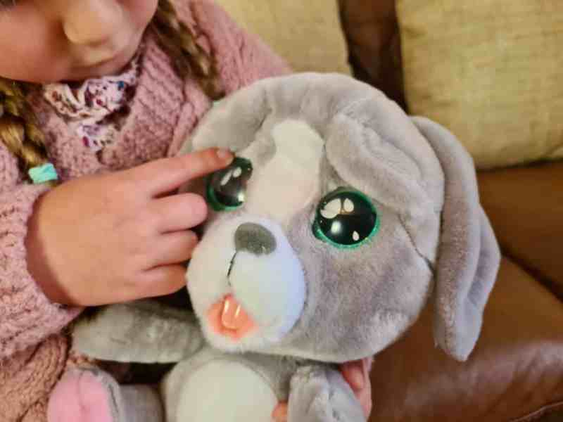 Emotion Pets Cry Pets Puppy