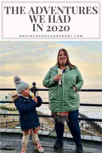The Adventures We Had In 2020