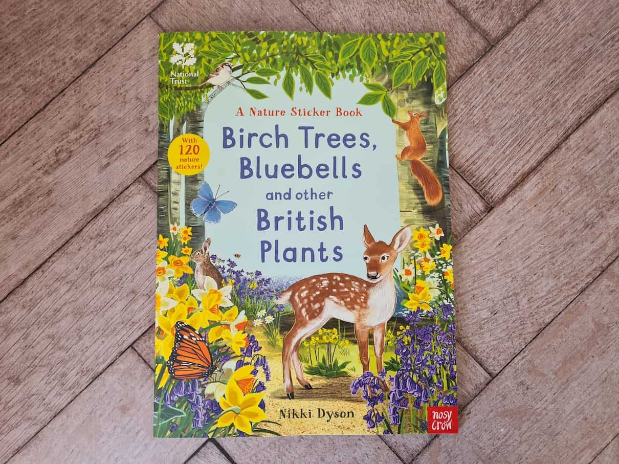 Birch Trees, bluebells and other British plants