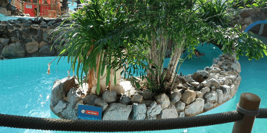 Center parcs activities subtropical swimming paradise Center parcs elveden forest swimming pool