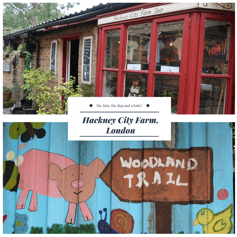 Hackney City Farm