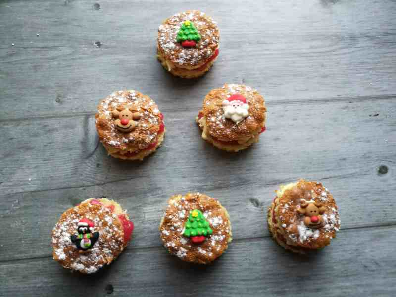 Orange and Cranberry Christmas Cakes For Children