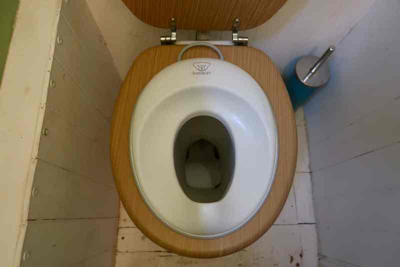 BabyBjörn toilet training seat