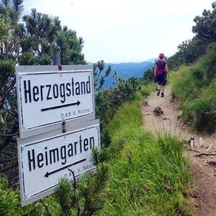 Zwischen Heimgarten und Herzogstand