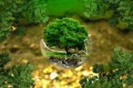Paryavaran sanrakshan essay in hindi