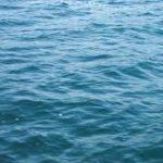 Save water save life essay in hindi language