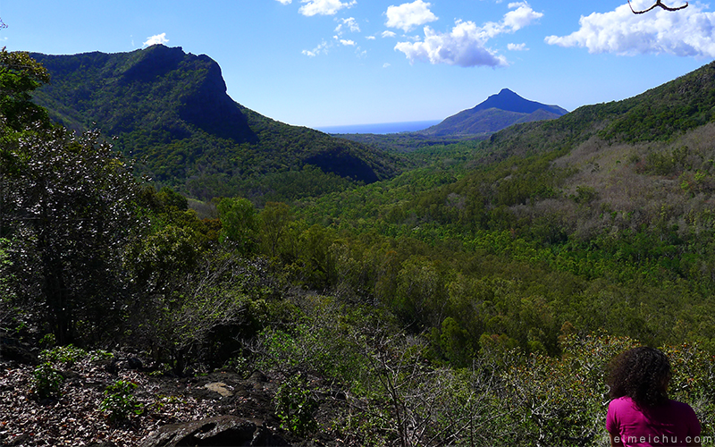 Things to do in Mauritius: The view from Black River Gorges National Park