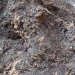 Kompost gebrauchsbereit