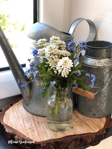 Frühlingsstrauß mit Schleifenblume, Gedenkemein und Vergissmeinnicht