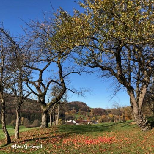 12tel Blick Oktober