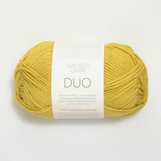 Duo Titel