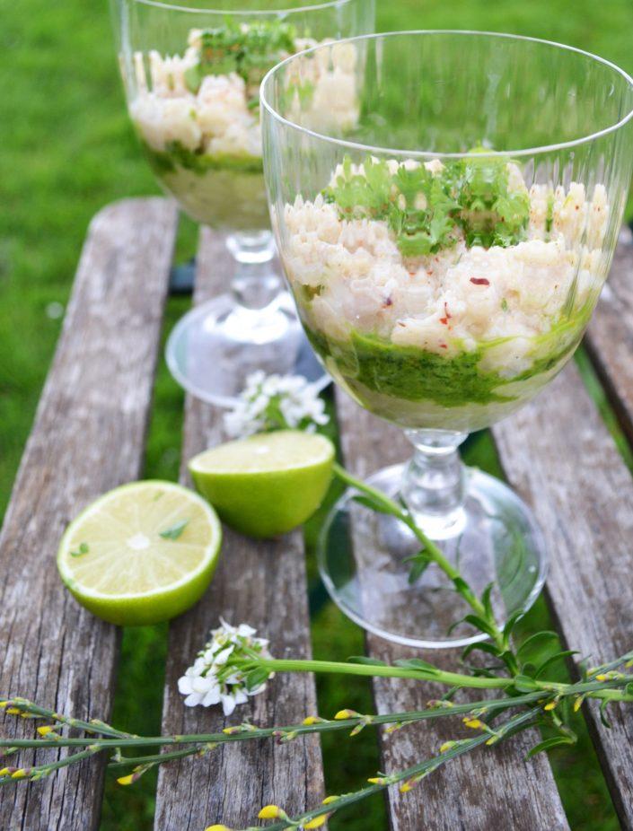 Pur genießen! Wolfsbarsch-Ceviche mit Avocado und Kräutern