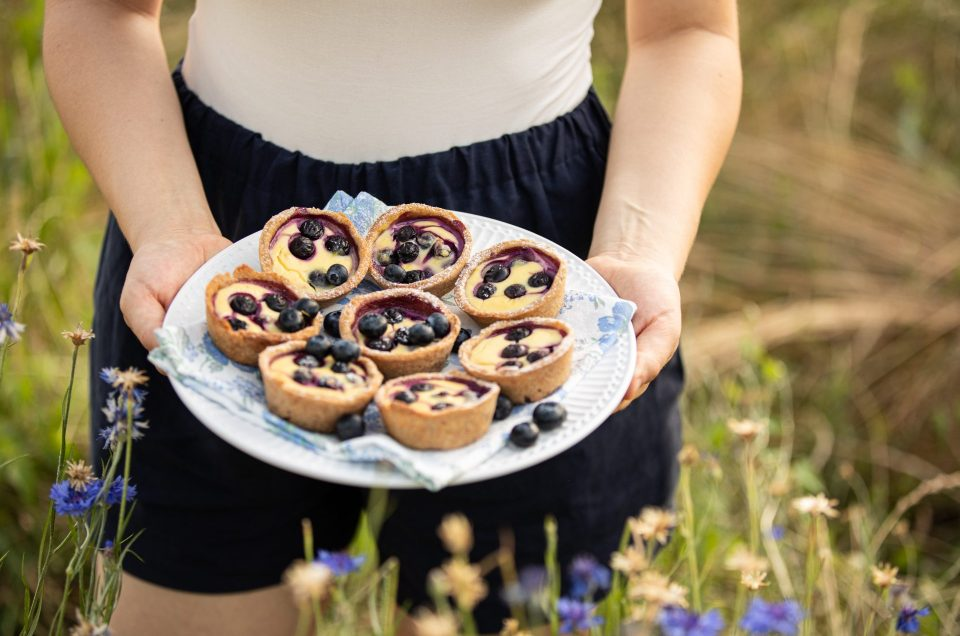 HYGG HYGG HURRA-PICKNICK! Dill-Scones mit Eier-Nektarinen-Salat & Heidelbeer-Topfen-Törtchen