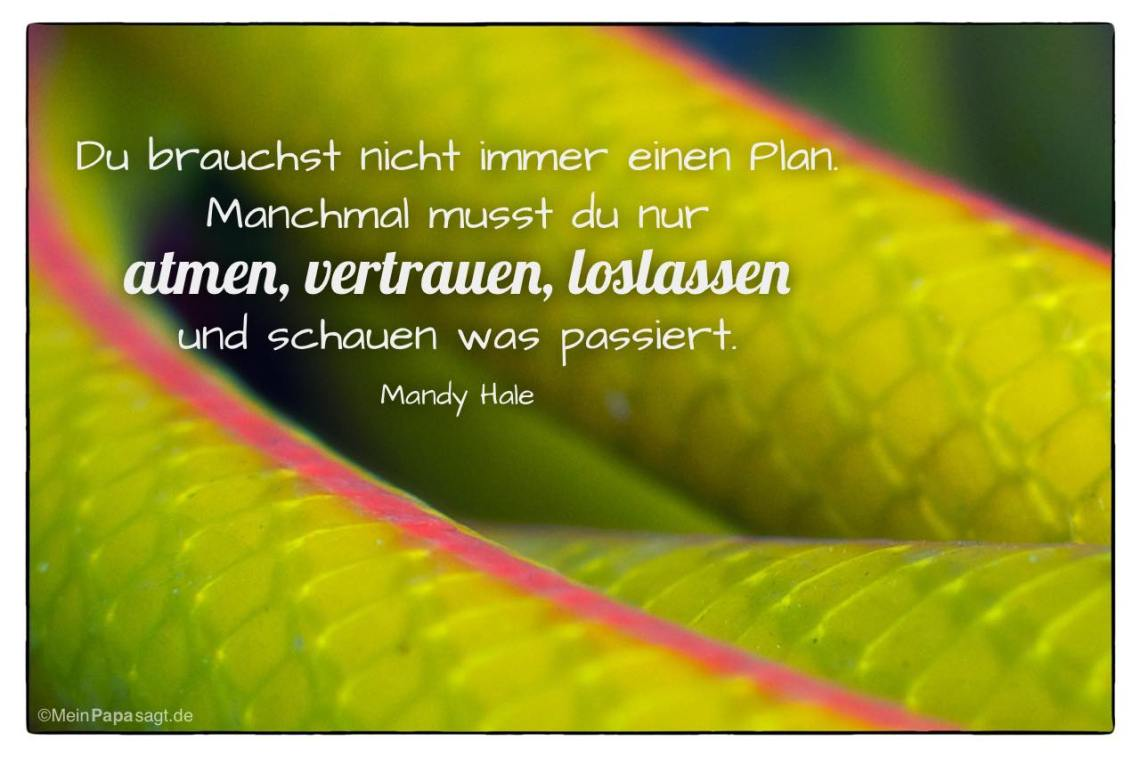 Image Result For Laotse Zitate Leben
