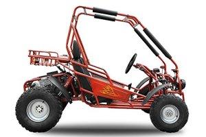 Maxi Buggy 200 ccm