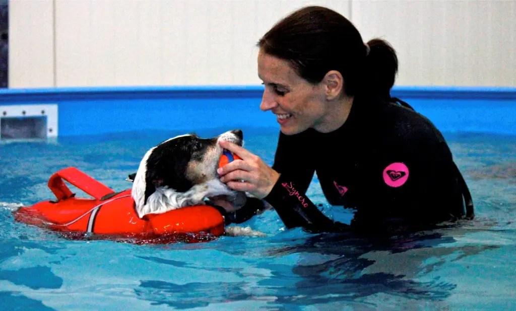 Therapeutisches Schwimmen für Hunde – Interview mit Tierphysiotherapeutin Anne-Marie Bestehorn