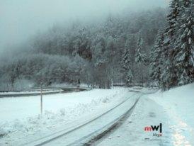 alle-jahre-wieder-im-winter-auf-dem-feldberg-im-schwarzwald-meinwiesental-wiesentaeler-zorz-pic-03