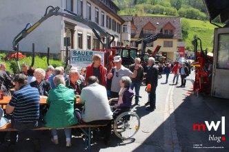 tegernauer-fruehjahrsausstellung-mit-dorffestcharakter-meinwiesental.mit-Dorffestcharakter-2